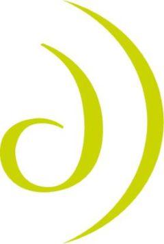 Design Directions Logo 2